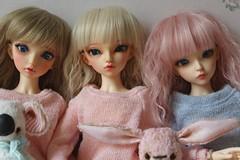 Tewin, Bora, Tea (Gigiholy) Tags: wig moe luts fairyland liria leekeworld minifee nf14 rheia rosenlied viridianhouse nomyens pearlsofdanube smpdoll oscardolleyes