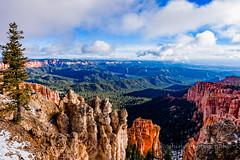 ROSH2813-Edit.jpg (Roshine Photography) Tags: utah us unitedstates lonetree brycecanyonnationalpark pentaxk3ii 2016utahtrip