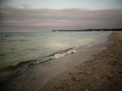 Gelbe Ostsee (Manuela Vierke) Tags: beach strand germany deutschland balticsea insel mai gelb pollen rgen isle ostsee mecklenburgvorpommern 2016 prora meckpomm prorerwiek 27052016 27mai2016
