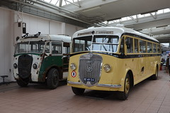 11.06.2016 (IV); 50 jaar standaardbus (chriswesterduin) Tags: hbm htm