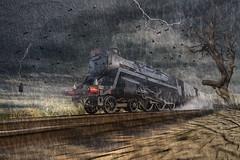 Train Ride (brian_stoddart) Tags: sky texture speed train transport steam