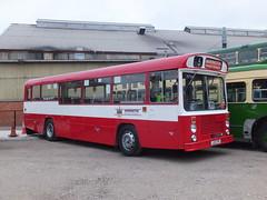 Warrington LED71P Rowsley (Guy Arab UF) Tags: park bus buses bristol warrington derbyshire peak east gathering re preserved lancs rowsley resl6g led71p