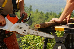 Hands of Stihl (thetrick113) Tags: work chainsaw cedar ledge hudsonriver gunks summerhouse hudsonrivervalley carpentry mohonk stihl mohonkmountainhouse shawangunk shawangunkmountains shawangunkridge chainsawchain rusticstructure sonyslta65v chainsawbar rusticcarpentry shiltchainsaw whittieroutlook stihlmsa200c batteryoperatedchainsaw whittieroutlooksummerhouse