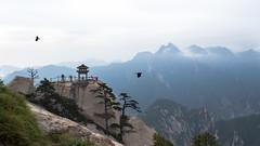 Huashan (Premouilong) Tags: bleu chine china huashan montagne mountain blue gris peak pic sommet grey rock roche