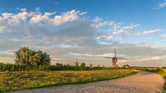 Summer evening in Kinderdijk (wimzilver) Tags: holland windmill nederland lee canonef1740mmf4lusm kinderdijk alblasserwaard molen canoneos5dmarkiii leefilternd09softgrad