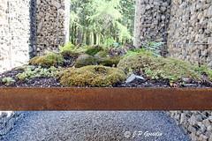 REFORD GARDENS     |    LE CAVEAU  |  2016 |   REFORD GARDENS  |      LES JARDINS DE METIS  |  METIS   |  GASPESIE  |  QUEBEC  |  CANADA (J.P. Gosselin) Tags: canada gardens les canon de eos switzerland quebec mark le ii 7d canoneos jardins metis gaspesie | markii caveau 2016 lecaveau reford suissebasel eos7d canoneos7d canon7d canoneosrebelt2i 7dmarkii ph:camera=canon canon7dmarkii 2016christianpoulesbles