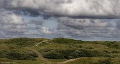 Weg naar het strand van Egmond-Binnen (Ruud Severijns) Tags: egmondbinnen noordholland duinen duinreservaat
