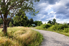 The Jaunt (HJharland5) Tags: park trees ohio summer sky tree green grass clouds nikon outdoor path walk arboretum traverse hike gravel jaunt j5 kirtland