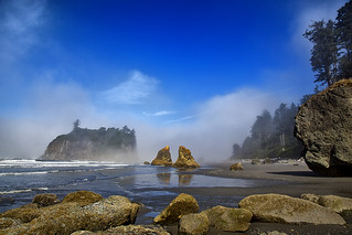 Ruby Beach Sea Fog