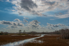 Grassy Waters (acarter5251) Tags: sky water grass clouds waters wetland grassy