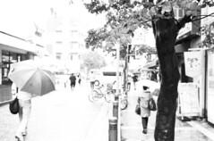 2352 (yarzyarth) Tags: leica film 35mm  fp4  m4  summilux35