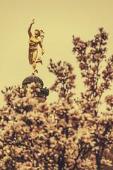 Stuttgart (bortescristian) Tags: canon germany deutschland photography eos rebel photo spring foto fotografie stuttgart picture april imagine dslr cristian germania aprilie poza primavara 500d alemagne 2013 斯图加特 xti bortes bortescristian cristianbortes شتوتغارت горад штутгарт シュトゥットガルト שטוטגרט 슈투트가르트 স্টুটগার্ট 史特加