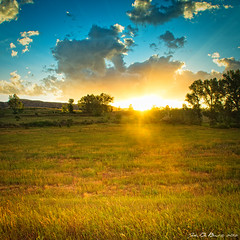 Summer (John De Bord Photography) Tags: blue light sunset summer sky cloud sun tree green nature beautiful weather sunrise season landscape outdoors dawn evening scenery colorado dusk scenic conservation romance romantic chatfieldstatepark