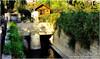 The entrance to the park environmental and plant of the city of Damascus |  مدخل الحديقة البيئية والنباتية لمدينة دمشق القديمة