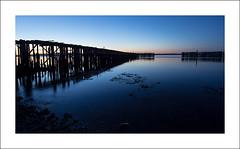 Fading light (Christa (ch-cnb)) Tags: sunset sea seaweed norway evening coast pier norge decay north olympus adapter fjord pilings bluehour trondheim srtrndelag zuiko decaying omd trndelag fourthirds ranheim em5 trondheimfjord akam microfourthirds zd918mm mmf1 tangenfjra