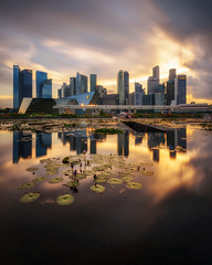 Marina Golden (Scintt) Tags: singapore mbs asm marina bay art science museum water clarity reflection mirror long exposure slow shutter filter golden sunset sun sky clouds dramatic travel tourist attraction exploration lotus movement motion skyline cityscape city urban modern structures architecture buildings offices shenton way scintillation scintt tripod reallyrightstufftvc33 versa cbd