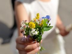 Hand picked flowers (freeatlast.52913) Tags: newyorkcity flowers children centralpark