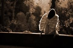 ...fallen autumn (Sus Blanco) Tags: portrait angel fallen conceptual