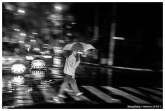 296B/365 | Por la cebra bajo la lluvia. (cefuenco) Tags: street blackandwhite cold blancoynegro rain lluvia streetphotography 365 fro a700 originalphotography proyecto365 fotografacallejera originalphotographer lensblr photographersontumblr