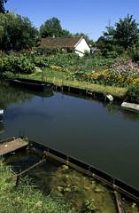 Amiens, hortillonnages (Ytierny) Tags: france vertical canal eau marais amiens ville verdure barque picardie somme hortillonnage maraîcher amienois fondplat jardinmaraîcher ytierny