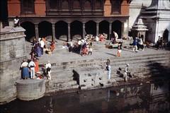 Pashupatinath (denismartin) Tags: travel nepal temple pagoda kathmandu 1992 shiva hindu cremation travelphotography bagmatiriver unescoworldheritagesites pashupatinathtemple pashu denismartin patinath