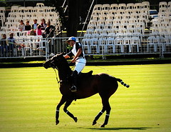 117th Hurlingham Club Open Championship, Argentina / 117 Abierto de Hurlingham YPF () Tags: vacation horse holiday latinamerica southamerica argentina argentine leather cheval nikon pony 70300mm polo rtw pferd vacanze tack hest roundtheworld paard sudamerica triplecrown  polopony amricadosul amricalatina globetrotter southernhemisphere zonasul amriquelatine polomatch  poloclub argentinien 16days  hurlingham equidae onhorseback amricadelsur sdamerika hurlinghamclub worldtraveler  ariannin  repblicaargentina littleeurope laaguada  americadelsud chukkas argentinerepublic  argentinidad pologame poloteam ladolfina   d700 nikond700 chukkers abiertodehurlingham  triplecorona 117thhurlinghamopen hurlinghamopen capitaloftango  chukers tradiciondelpoloargentino