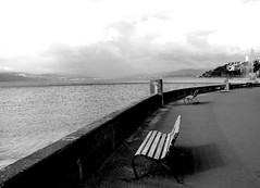 Wellington benches (lindanobre) Tags: sea newzealand water bench wellington benches