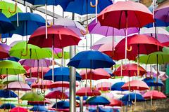 1000 Umbrellas (cybertect) Tags: colour london umbrella explore se1 theborough londonse1 brewwharf canonfd85mmf12l sonya7