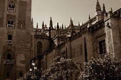 Catedral de Sevilla (Jotaefe_) Tags: espaa sevilla spain arquitectura edificios catedral seville andalucia architect