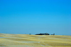From a distance (~ Mariana ~) Tags: trip travel blue winter sky snow cold landscapes nikon ab prairie mariana