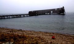 2014-03-01 (Gim) Tags: denmark zealand dnemark danmark sundet kastrup resund amager danemark sund resund trnby sjlland kastrupstrandpark strandpark sjlland sbadet hovedstaden sneglen
