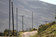 Link to civilisation. 1 (northernkite) Tags: track farm scottish glen poles phonelines