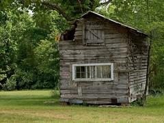 HODGE PODGE LODGE (NC Cigany) Tags: abandoned rural nc cabin farm weathered