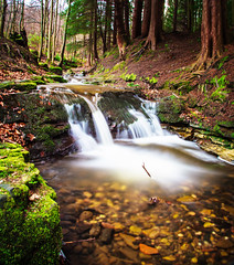 stream (CapturedWandering.com) Tags: forest scotland waterfall woods stream fife falkland