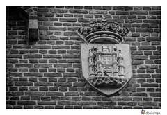 Blason de la ville (chrisalys85) Tags: street city blackandwhite bw architecture facade canon emblem coatofarms belgium belgique belgie noiretblanc streetphotography mons bnw blason wallonie blazon hainaut blackandwhitephotos armoiries architecturephotography cityexplore canon550d