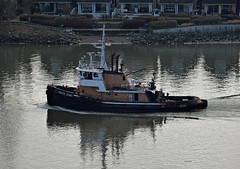 Pacific Chief (drmack2) Tags: bc pacific chief tugboat fraserriver frasershipyard