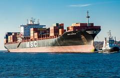 MSC Carole (FotoMarc64) Tags: ship ships carole containership elbe schiffe msc sonyalpha700