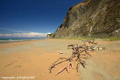 Corfu Beach View (Holfo) Tags: sea beach rock landscape greek seaside sand nikon peace outdoor tranquility greece driftwood shore corfu tranquil sanstefanos aghiosstephanos d5100