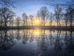 winter solstice (koaxial) Tags: trees winter light sunset sun reflection nature landscape mirror low solstice landschaft bume spiegelung koaxial pc25095458p6mantiukajpg