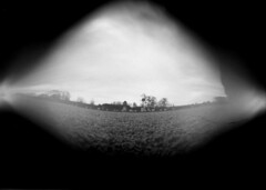 Pinhole Image (Pariah Pics) Tags: pinhole pinholecamera pinholephotography wppd wppd2016