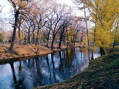 2015-11-10 07.27.20 1 (anastasiya_klenyaeva) Tags: trees sky nature russia autmn     saratov vsco vscocam vscorussia vscosaratov