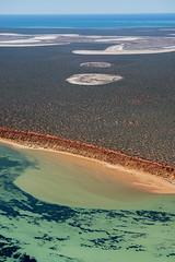 Shark Bay WA - DSC3189