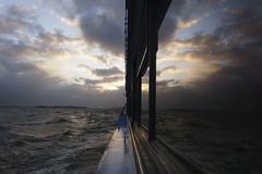 Reflection - Boat Tour on Elbe River (Saibot7791) Tags: port river germany deutschland harbour hamburg hafen fluss allemagne hambourg elbe fleuve bootstour thisishh promenadeenbateau 1650mm a6000 sel1650 sonyalpha6000