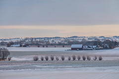 Winter scenery (Infomastern) Tags: morning winter snow sunrise landscape countryside vinter sn soluppgng morgon landskap sdersltt landsbygd