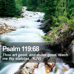 Daily Bible Verse - Psalm 119:68 (daily-bible-verse) Tags: photography heaven prayer devotion salvation quoteoftheday mightywarrior