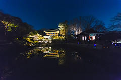 Seoul: Changdeokgung Palace (stuckinseoul) Tags: city beautiful night asian evening photo asia tour capital palace korea korean photograph u seoul moonlight kr southkorea changdeokgung    seoulkorea republicofkorea i canoneos6d flickrseoul sigma1224mmf4556dghsmii iseoulu