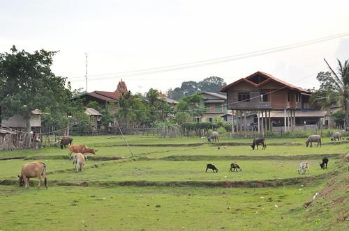 savannakhet - laos 34