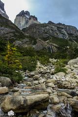 Patagonia, Chile (yerko.lecaros) Tags: chile patagonia paisajes nature ngc torresdelpaine circuitow