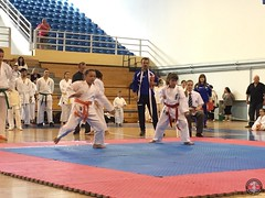 stefanou_15_5_2016_knockdown_52