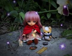 Kokoro and Magello's Plight #2 (Arthoniel) Tags: toy outside lights doll outdoor handmade ooak magic tan collection fairy fox figure limited mage hani kokoro needlefelt latidoll lati magello latiyellow masterofdragon bjdmballjointeddoll